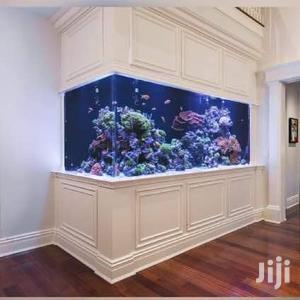 Inside Wall Aquarium | Fish for sale in Delta State, Warri