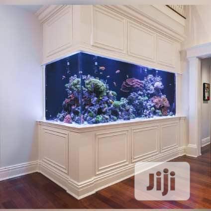Inside Wall Aquarium