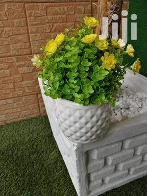 Beautify That Home With Out Potted Small Flowers | Garden for sale in Akwa Ibom State, Ikot Ekpene