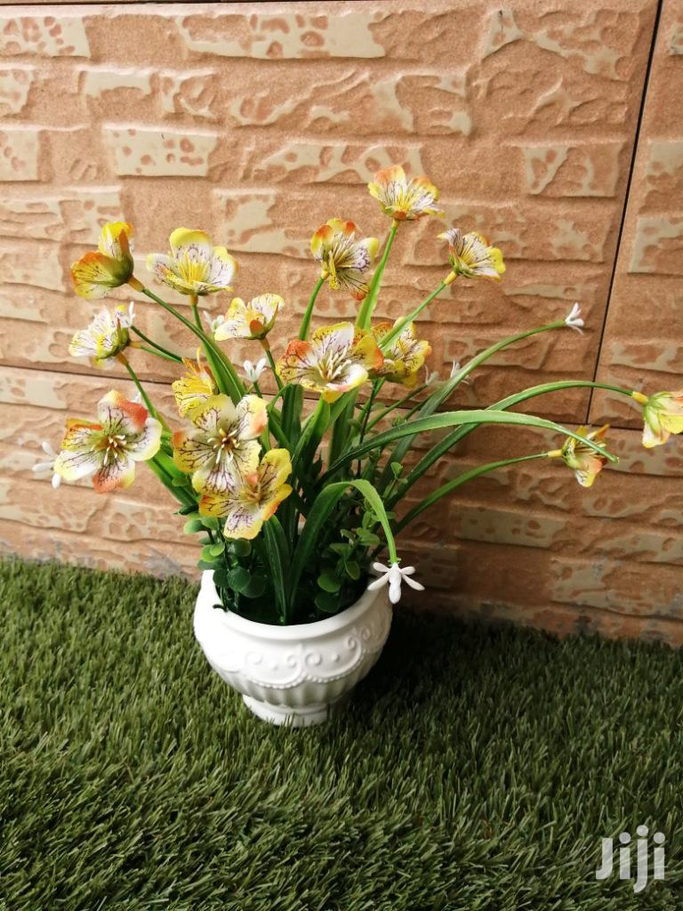Give Your Office A Good Look With Our Pots Flowers,Order Yours