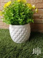 Beautiful Mini Cup Flowers For Decoration At Sales | Garden for sale in Sokoto State, Binji