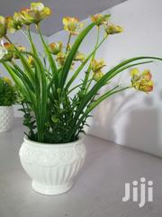 Beautiful Cup Mini Flower For Decor At Sales | Garden for sale in Bayelsa State, Nembe