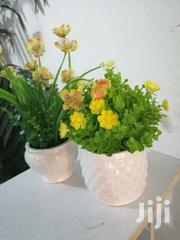 Ceramic Cup Flowers For Decoration All At Sales To Bulk Buyers | Garden for sale in Jigawa State, Taura