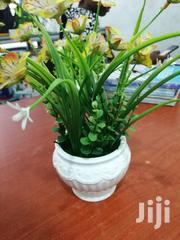 Portable Mini Flowers On Cups For Sale,Make Your Orders Now | Garden for sale in Borno State, Bama