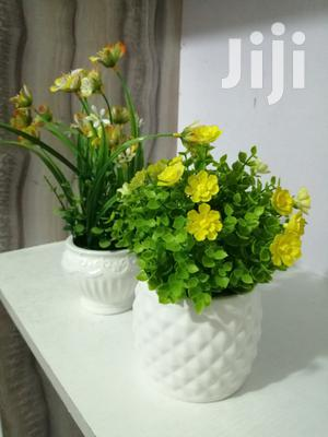 Mini Flowers Available For Sales | Garden for sale in Abia State, Umuahia