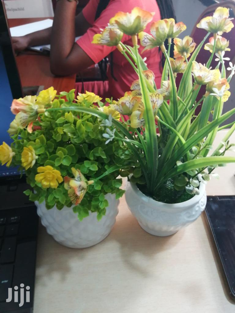 Decorative Mini Potted Flowers For Beautification Of Homes/Office | Garden for sale in Lekki, Lagos State, Nigeria