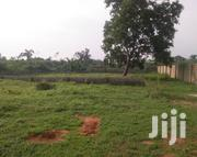 1000sqm Of Land With C Of O For Sake Beside Apple Estate Amuwo Odofin | Land & Plots For Sale for sale in Lagos State