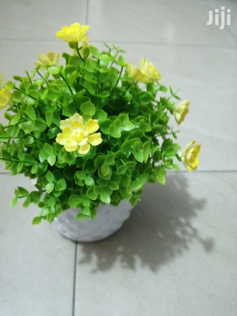 Affordable Beautiful Decorative Mini Cup Flowers For Decorations | Home Accessories for sale in Akamkpa, Cross River State, Nigeria