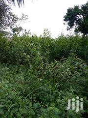Land For Sale At Iwu Community-ekiadolor Benin City | Land & Plots For Sale for sale in Edo State, Okada