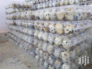 Quail Eggs | Livestock & Poultry for sale in Abuja (FCT) State, Karu