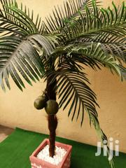 Artificial Indoor And Outdoor Coconut Tree | Garden for sale in Adamawa State, Mubi South