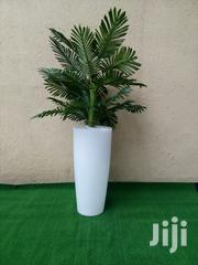 Mini-natural Artificial Plant | Garden for sale in Edo State, Ovia South