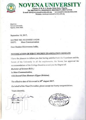 Customer Service Representative   Customer Service CVs for sale in Lagos State, Amuwo-Odofin
