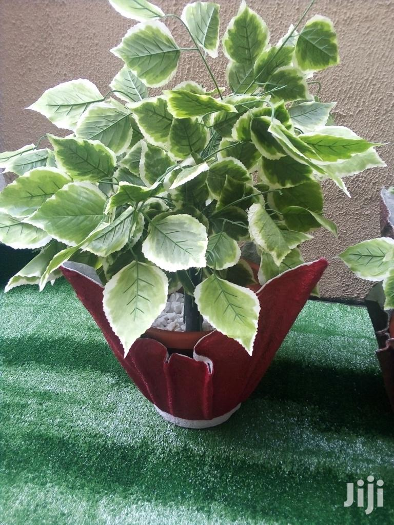 Vase Planter In Nigeria | Landscaping & Gardening Services for sale in Amuwo-Odofin, Lagos State, Nigeria