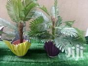 Adorable Vase Planter In Nigeria   Home Accessories for sale in Cross River State, Akpabuyo