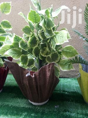 Polymer Cemented Vase Planter For Sale | Home Accessories for sale in Lagos State, Badagry