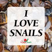 Snail Is Good To Eat. | Meals & Drinks for sale in Lagos State, Surulere