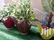 Polymer Cement Infuse Used As A Flower Holder | Garden for sale in Lagos State, Ikeja