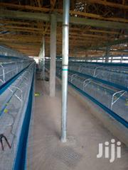 Super Layers Battery Cage | Farm Machinery & Equipment for sale in Lagos State, Alimosho
