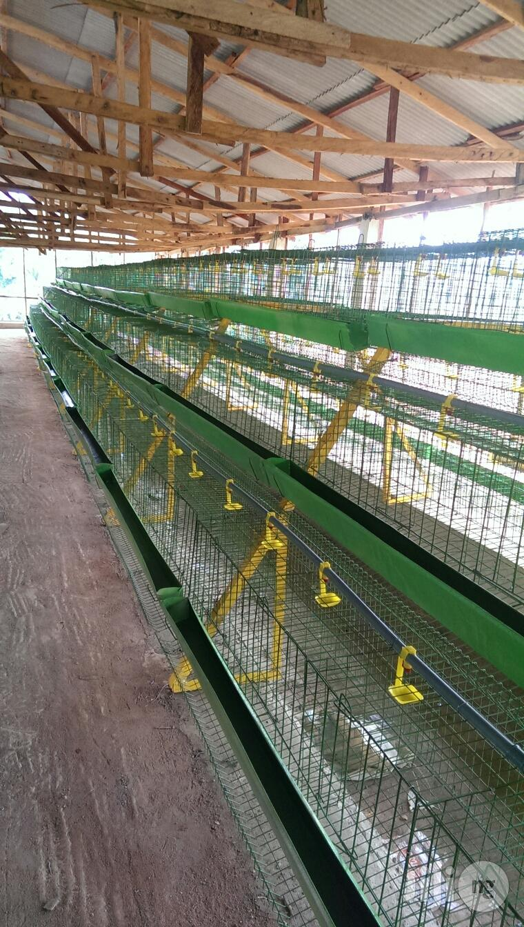 Battery Cages For Laying Birds