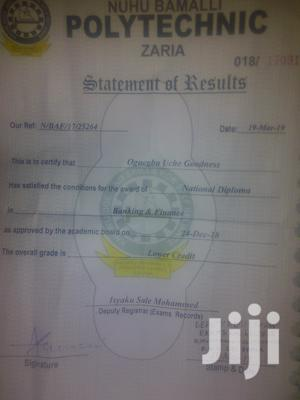 Field Sales Agent   Sales & Telemarketing CVs for sale in Katsina State, Funtua