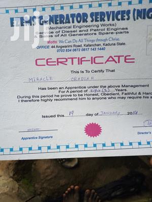 Nursing CVs | Healthcare & Nursing CVs for sale in Kaduna State, Jema'a