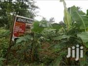 Jehus Farmland At Ogere Ogun State For Sale | Land & Plots For Sale for sale in Ogun State, Ifo