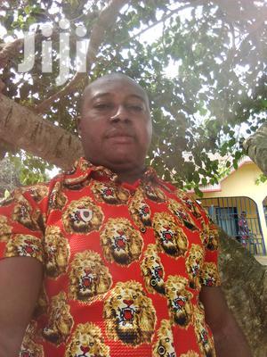 Executive Driver | Logistics & Transportation CVs for sale in Lagos State, Ojo
