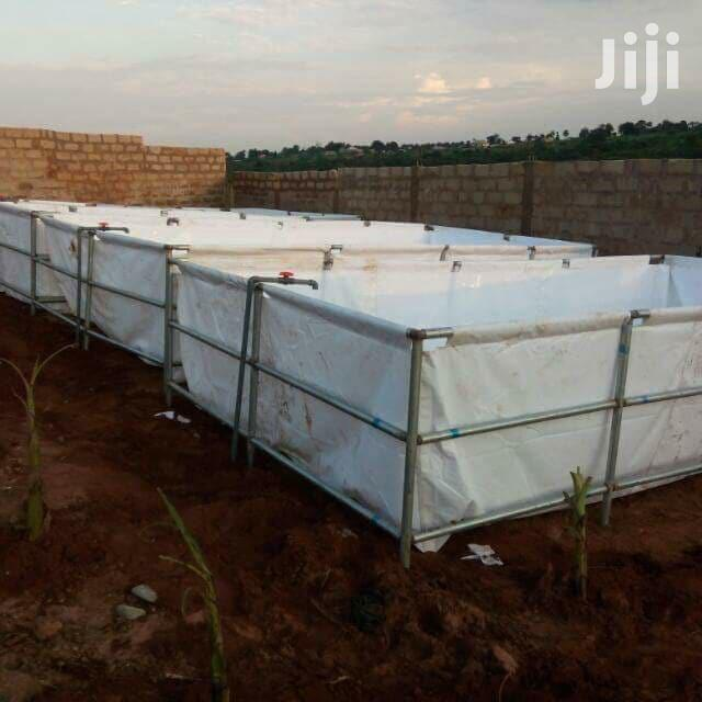 Fish Ponds Available For Sale