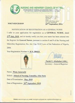Healthcare & Nursing CV   Healthcare & Nursing CVs for sale in Rivers State, Port-Harcourt