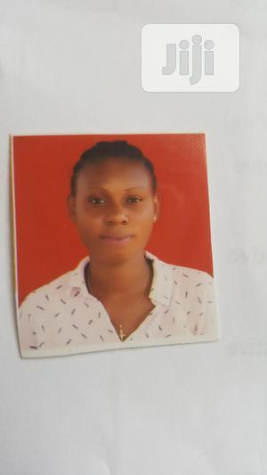 Customer Service CV   Customer Service CVs for sale in Ogun State, Ijebu Ode