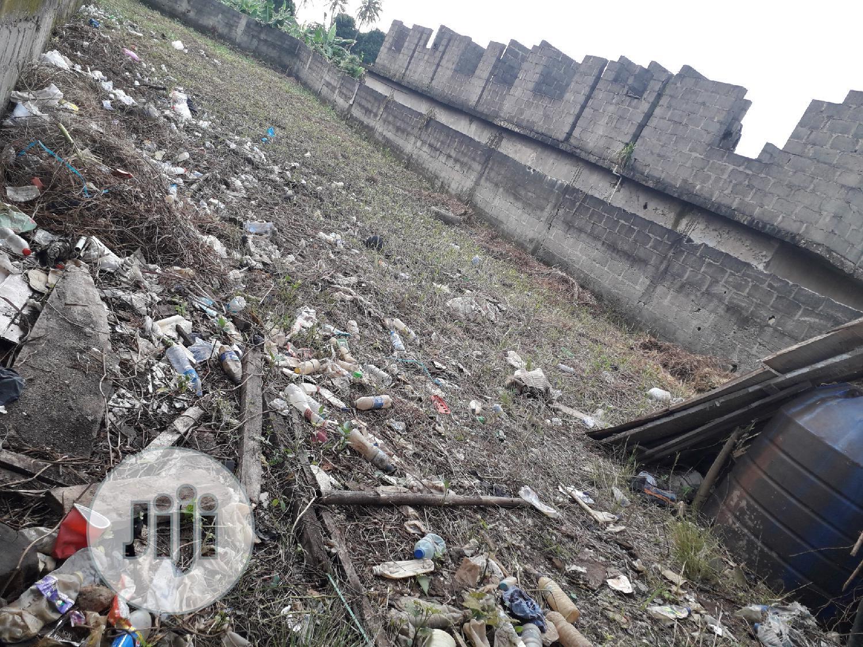Archive: Virgin Half Plot of Land At Peace Estate Sholuyi Gbagada For Sale.