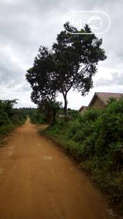 Deed of Assignments,Survey,Receipt | Land & Plots For Sale for sale in Ogun State, Ado-Odo/Ota