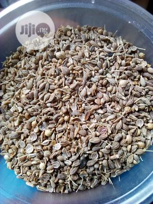 Anise Seeds   Feeds, Supplements & Seeds for sale in Rivers State, Port-Harcourt