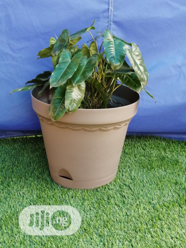 Buy Brown Plastic Flower Pots | Garden for sale in Mubi North, Adamawa State, Nigeria
