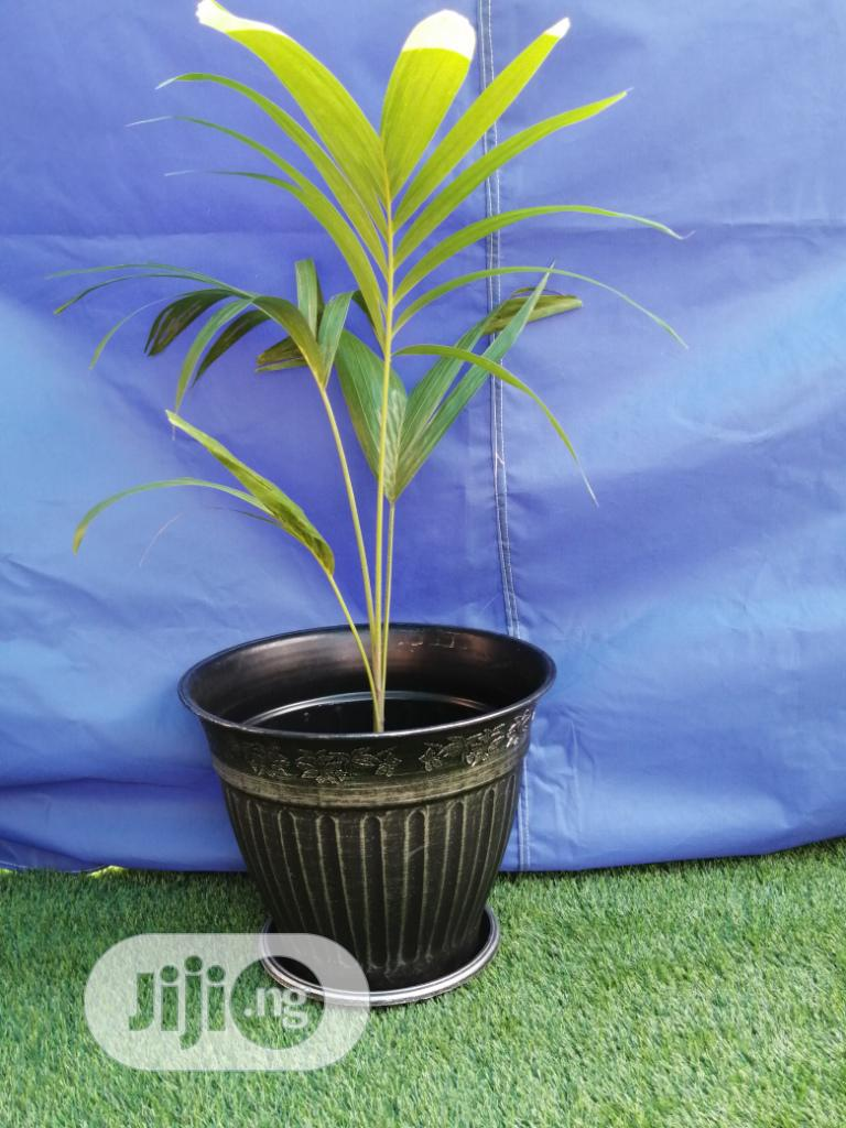 Durable And Quality Flower Pots | Garden for sale in Guyuk, Adamawa State, Nigeria