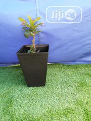 Quality Squared Beautiful Flower Planter | Garden for sale in Jigawa State, Taura