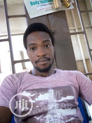 Teaching CV   Teaching CVs for sale in Ogun State, Ado-Odo/Ota