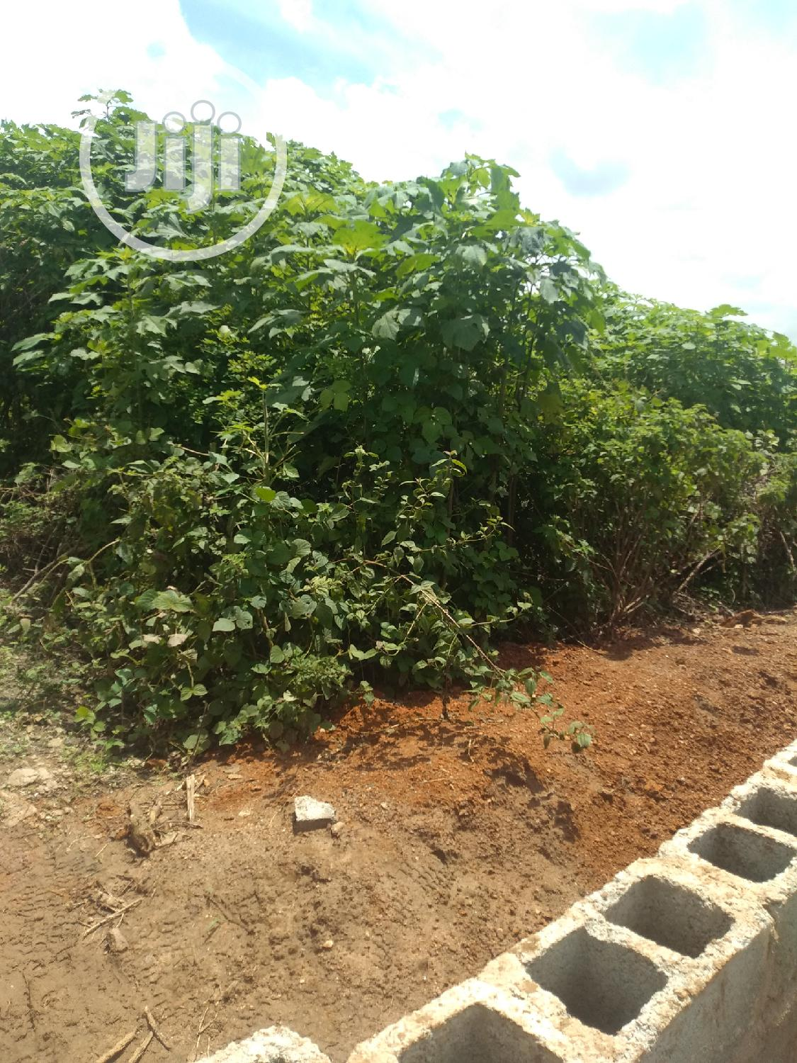 Serial Plots Measuring 600sqm Each for Sale at Kubwa Ext.3B | Land & Plots For Sale for sale in Kubwa, Abuja (FCT) State, Nigeria