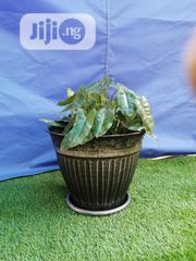 Outdoor Metal Flower Pot For Sale | Garden for sale in Plateau State, Bokkos