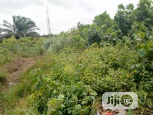 Three(3) Plots of Dry Land Opposite Eagle Stone Hotel Ojo for Sale. | Land & Plots For Sale for sale in Lagos State, Ojo