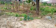 50 × 150 Expanse of Land Kaduna Road | Land & Plots For Sale for sale in Niger State, Tafa