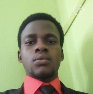 Software Developer | Computing & IT CVs for sale in Lagos State, Ikeja