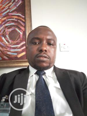 Internal Audit Officer | Accounting & Finance CVs for sale in Lagos State, Lagos Island (Eko)