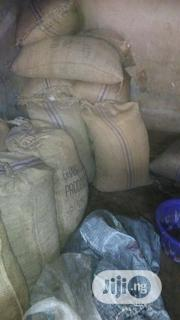 Tonnes Of Cocoa Bean For Sales | Feeds, Supplements & Seeds for sale in Edo State, Okada