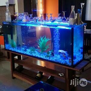 Aquarium in Lagos | Fish for sale in Lagos State, Surulere