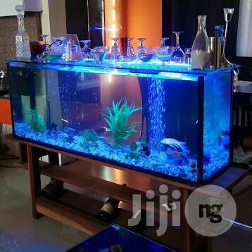 Archive: Aquarium in Lagos