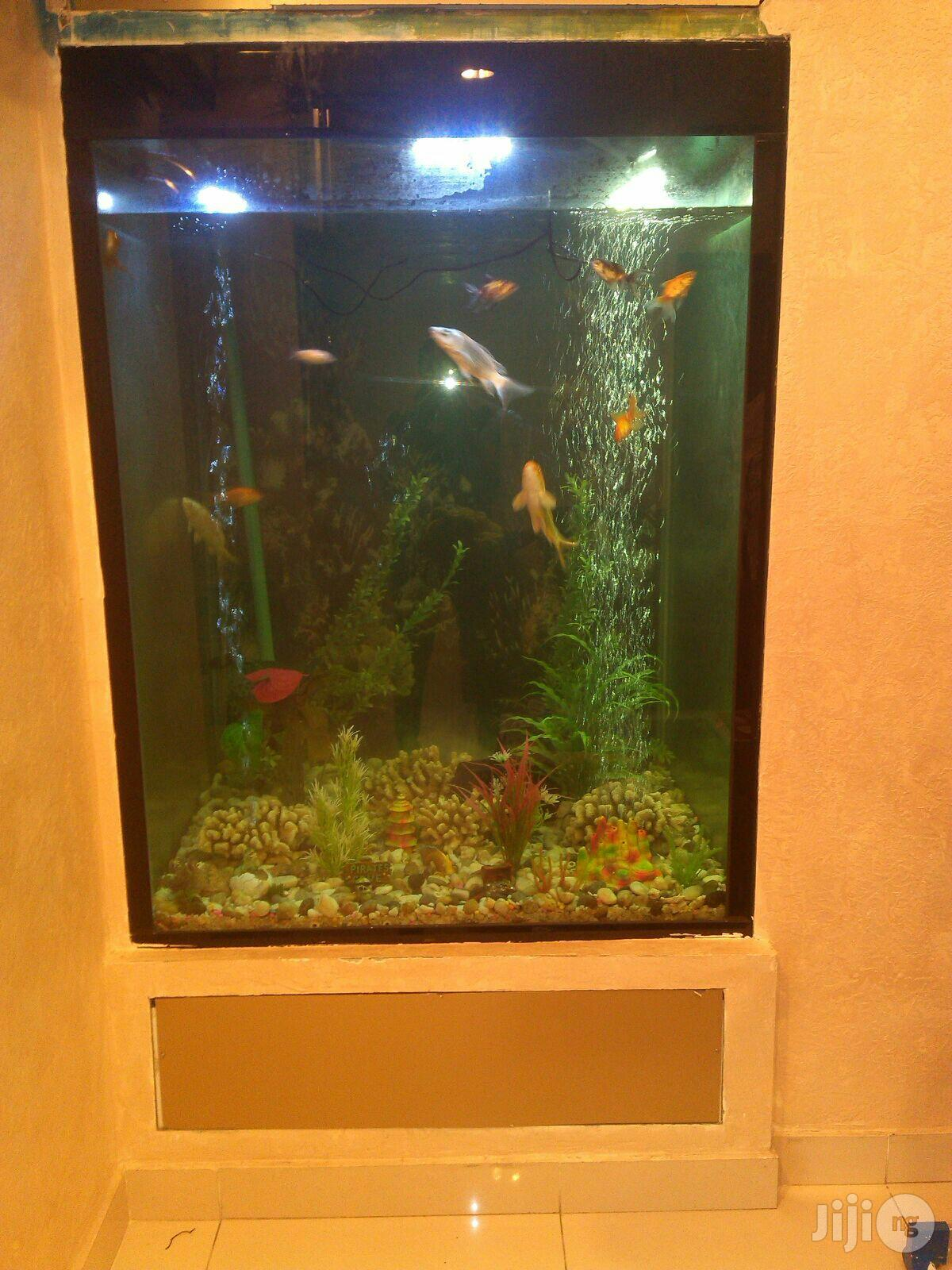 Archive: Aquarium Installation
