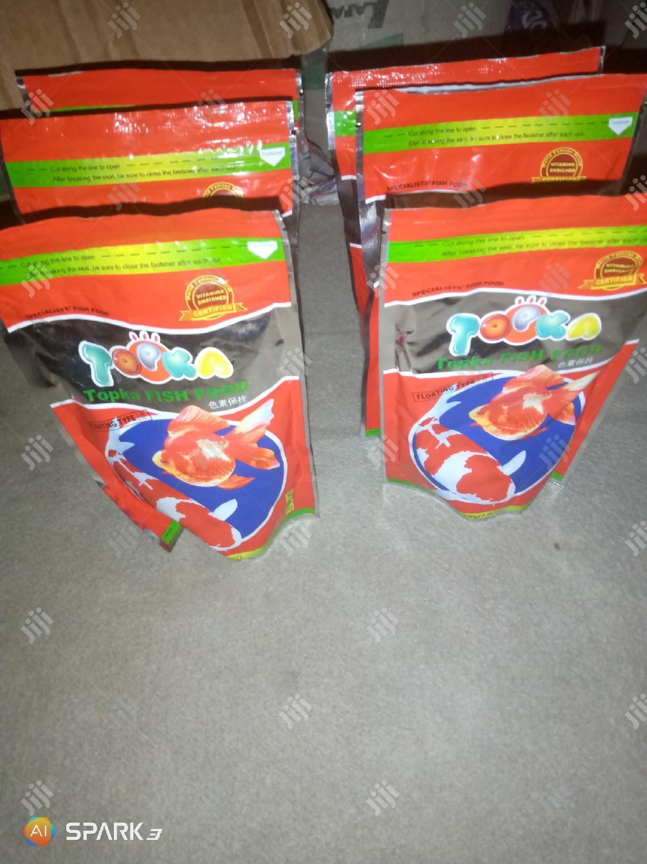 Aquarium Fish Feed Supply   Fish for sale in Ikeja, Lagos State, Nigeria
