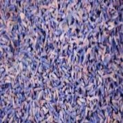 Lavender Organic Lavender Buds Flower | Feeds, Supplements & Seeds for sale in Lagos State, Victoria Island